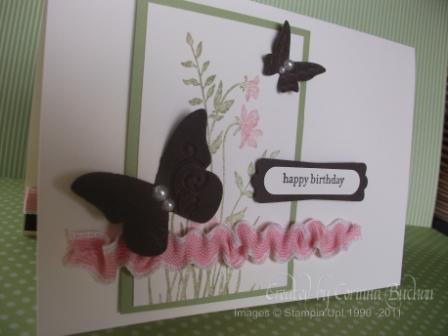 Nat's Card